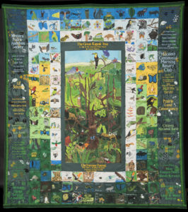 TNQP: Children's Eternal Rainforest
